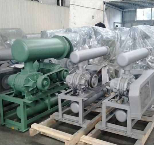 Twin Lobe Blower For Dispatch